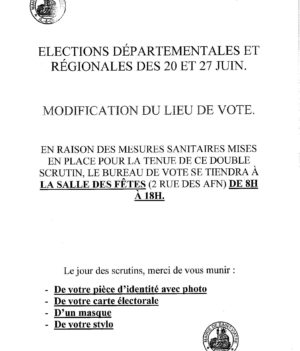 Élections départementales et régionales 20 et 27 juin